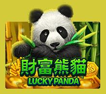 Lucky Panda